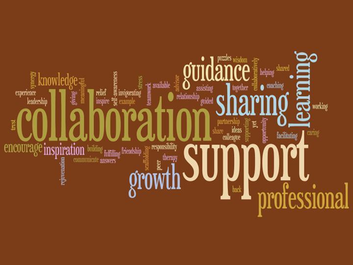 Mentoring and Induction / Mentor Teacher Program Newsletter
