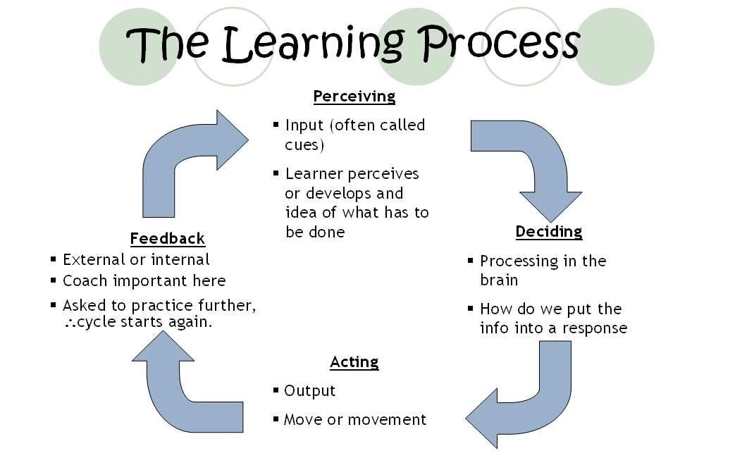 essays on the learning process