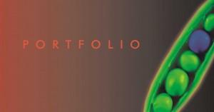 portfolio-300x157